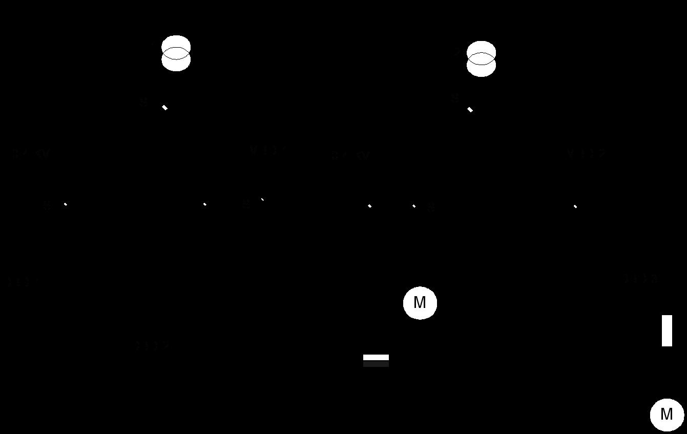 مخطط شبكة توزيع جهد منخفض إشعاعية من ثانوي كشك المحولات